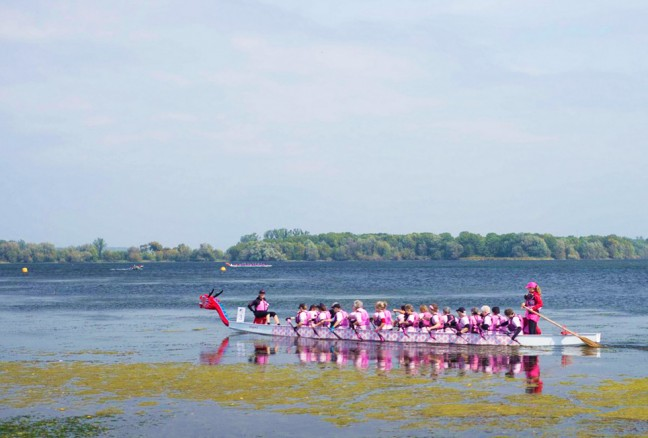 Survivor's Abreast Dragonboating team in their race against Kingston Chestmates.