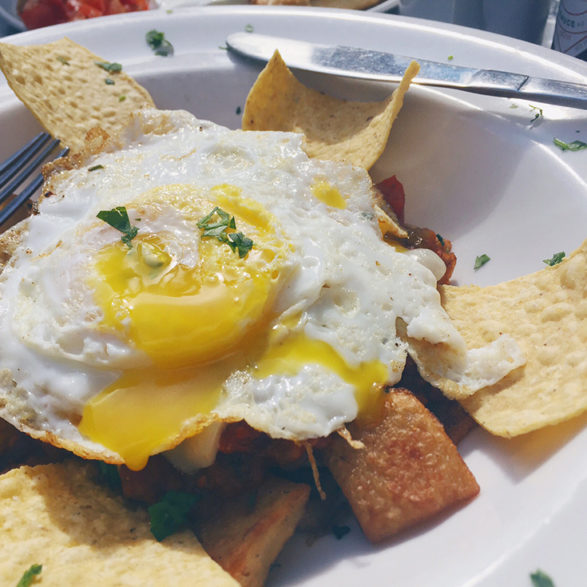 Where to Brunch in the YGK