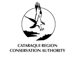 Holiday Crafting At Little Cataraqui Creek Conservation Area