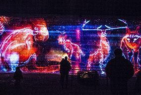 Video: Inside Kingston's Lumina Borealis