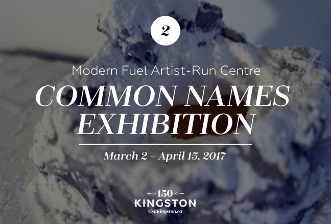 Common Names Exhibition at the Modern Fuel Artist-Run Centre Date: March 2 - April 15, 2017