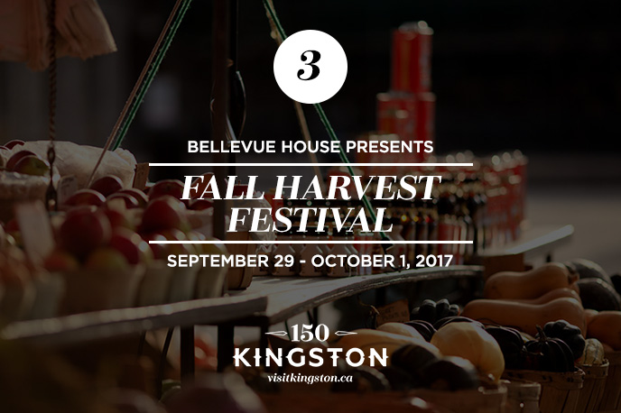 25 Things to do in October in Kingston