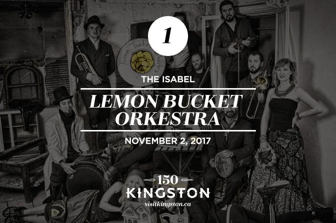 25 Things to do in November in Kingston